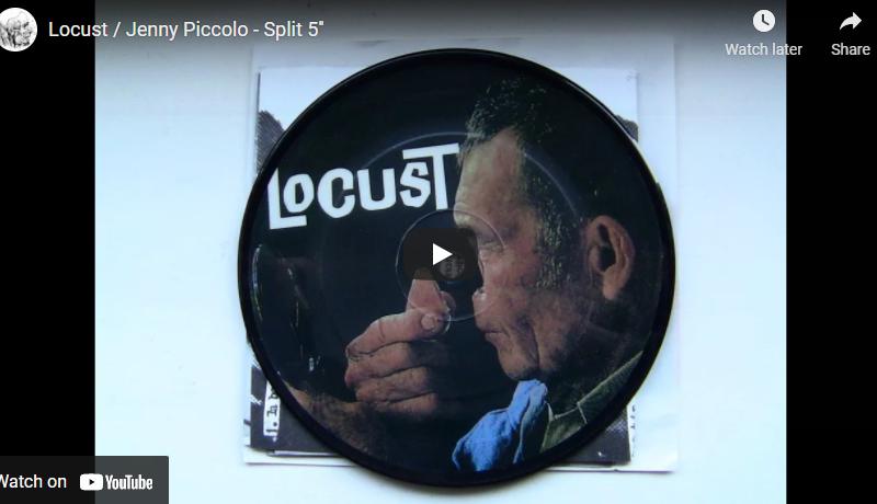 "Locust / Jenny Piccolo – Split 5"""
